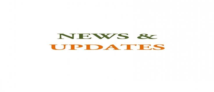 news-detail